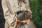 Child girl holding seedlings ready to be planted in the ground little gardener in brown dress